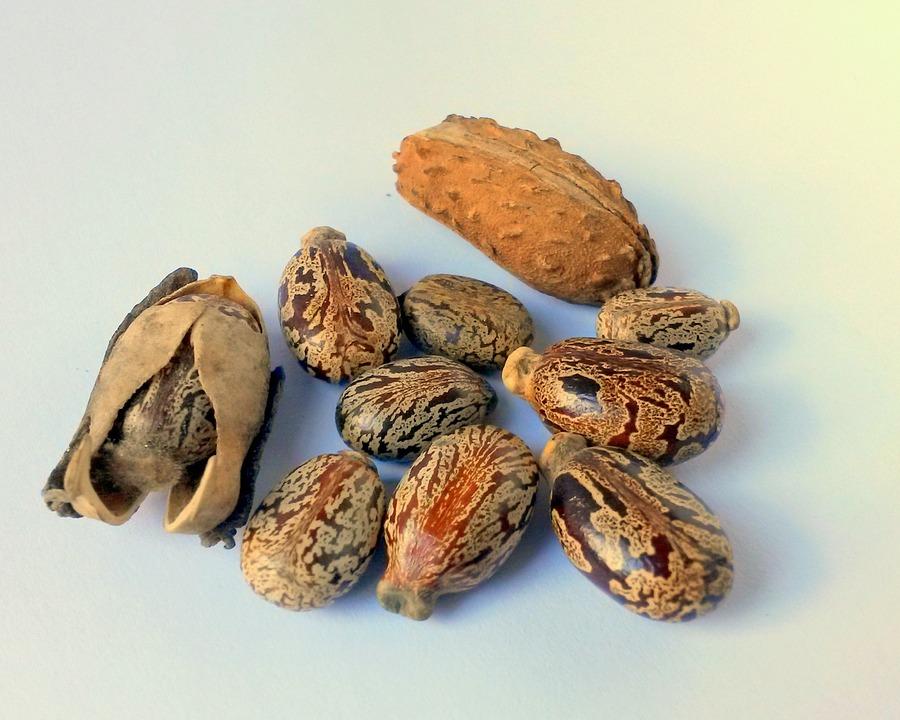 castor oil for remove spots