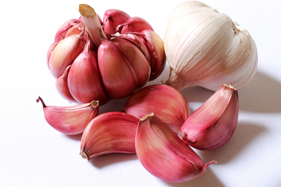 garlic for cough