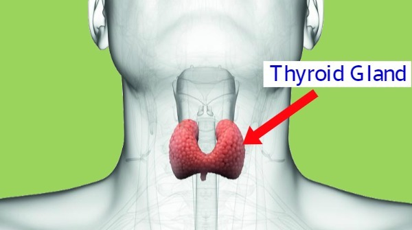 What is underactive thyroid?