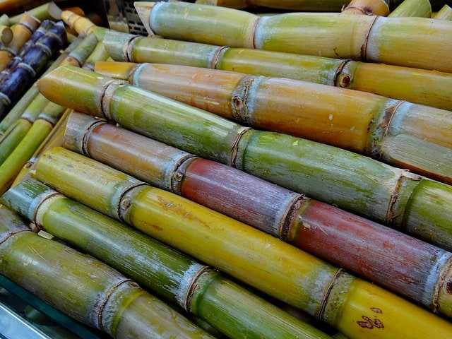 sugarcane juice nutrition