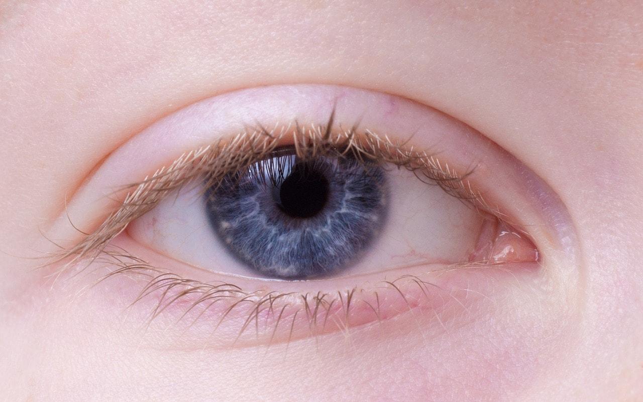White Insides Lower Eyelid