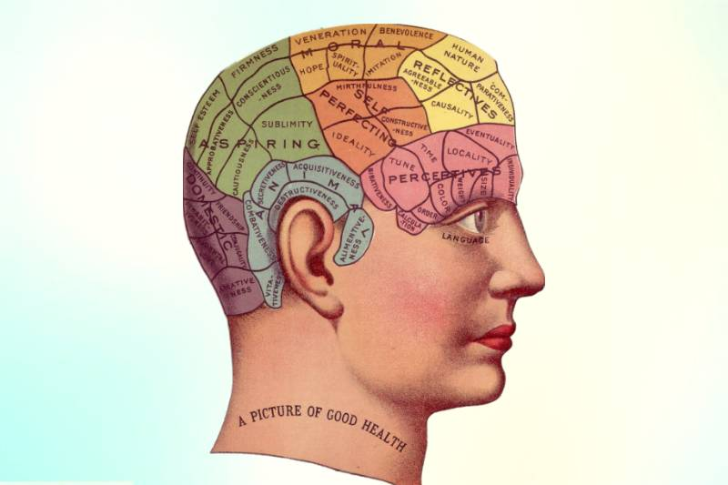 Ginger Improves brain function